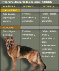 https://hospitalanimalesconcolas.com/images/desparasitacionPerro.png