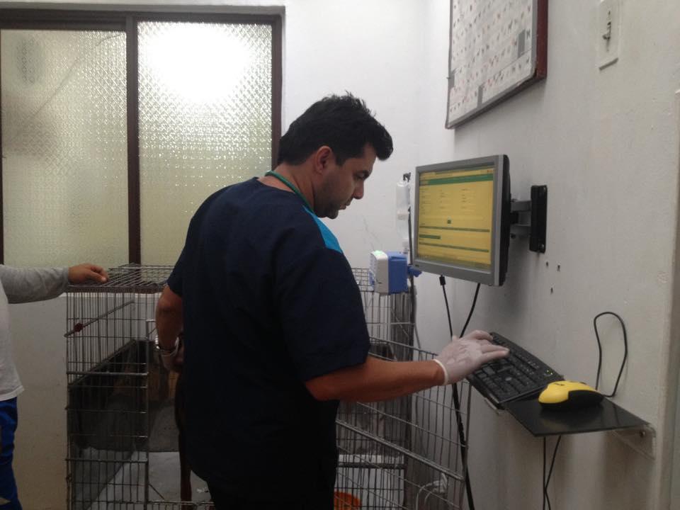 https://hospitalanimalesconcolas.com/images/hospitalizacionVeterinaria.jpg